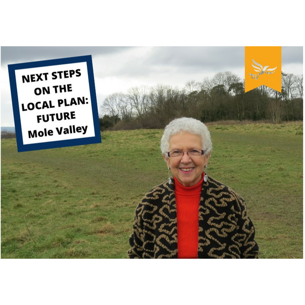 Margaret Local Plan